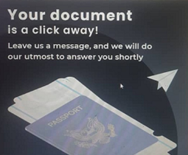 contact All In One Document to get your visa online